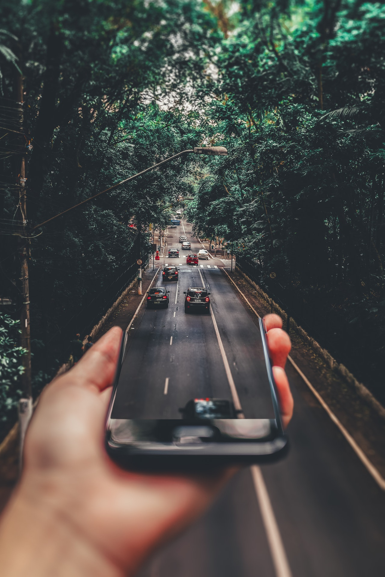 automóviles en las calles